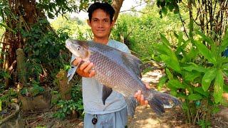 จัดมาอีกแล้วปลาอีกา 3 กิโลกับสูตรเหยื่อกินเร็ว