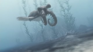 Anomalocaris - Sea Monster