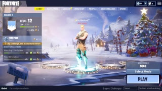 FORTNITE PC STREAM