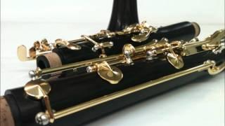 Schille Clarinet S-200