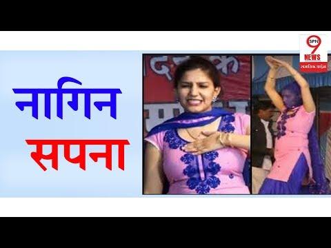 Sapna Choudhary के नागिन डांस ने फैंस को किया मदहोश, Video Viral   Sapna Choudhary Nagin Dance