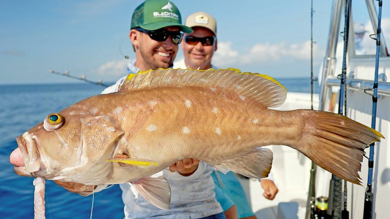 Deep Sea Alabama Fishing