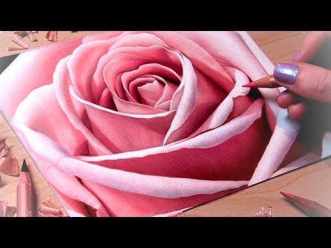 Drawing a Rose Close-Up