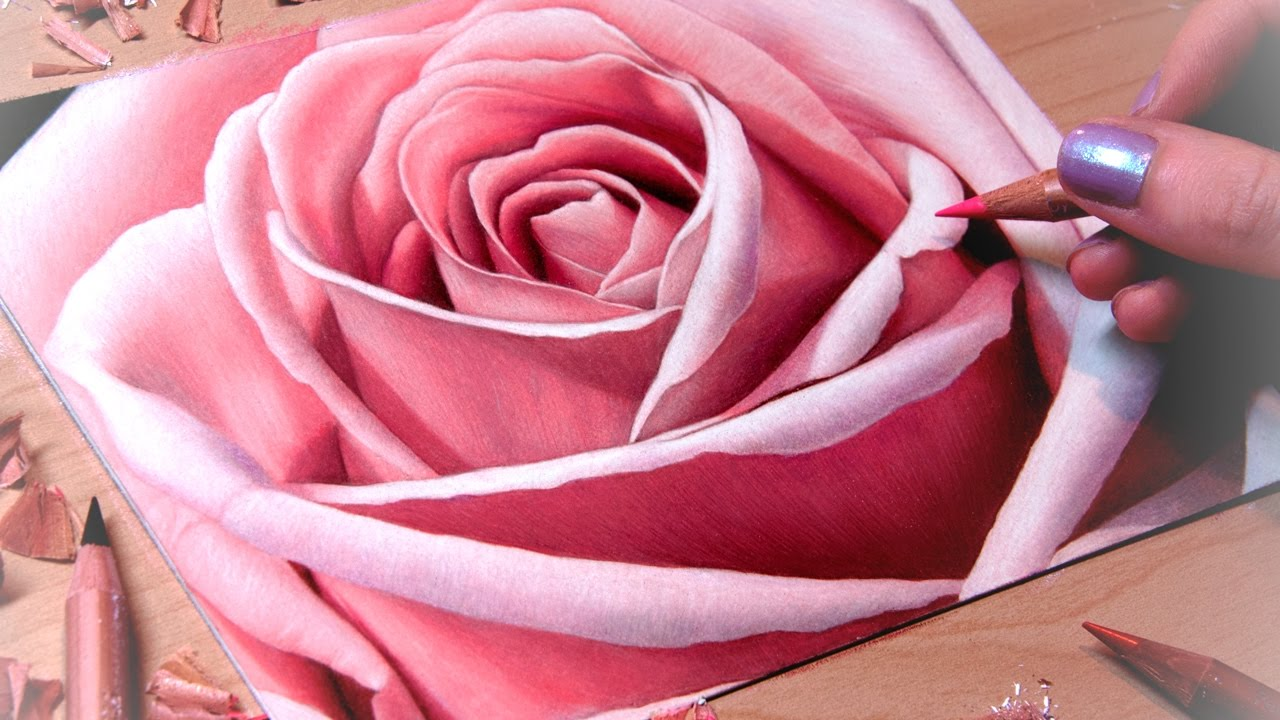 Drawing A Rose Close Up Youtube