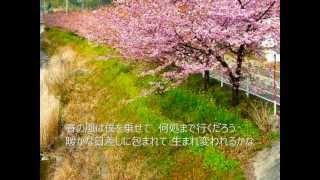 小野真弓さんの「春」のカバーです。 とても春らしくて爽やかな良い歌で...