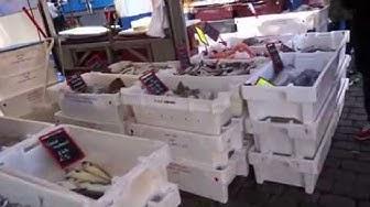 Der Markt in Groningen Holland grote markt vismarkt