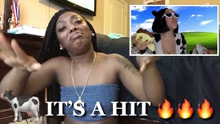 "SONG OF THE YEAR!!! | DOJA CAT - ""MOO"" REACTION VIDEO"