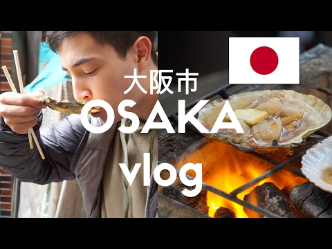 First Day in Japan (Osaka, Japan Vlog 1)