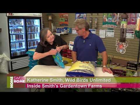 Wild Birds Unl  Seed Comparison