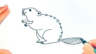 How to draw a Beaver for kids | Beaver Drawing Lesson Step by Step