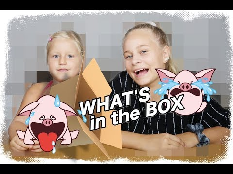 What's in the Box??????