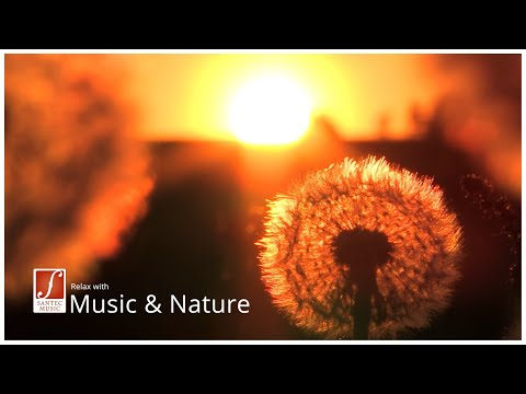 Ganz ruhige, tiefe Entspannungsmusik - Evening Symphony relaxing music - Santec Music Orchestra