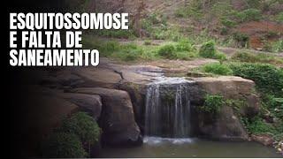 O verme venceu: Schistosoma mansoni e seus paraplégicos