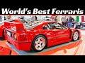 Un mondo di Ferrari dal '50 ad oggi