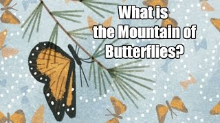 What is the mountain of butterflies  - Google Doodle for Monarch Butterfly Discovery