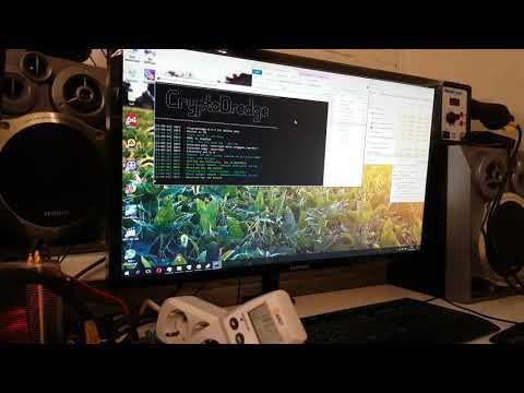 Майнинг на компьютере с одной видеокартой.
