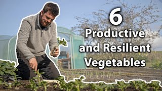 The 6 Ultimate Vegetables to Grow for Self-Sufficiency