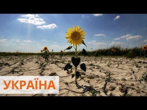 Из-за глобального потепления к 2100 году 80% украинских земель угрожает засуха