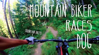 Mountain Biker Races DOG! 4K Gimbal! Lithium Trail Jackson, WY