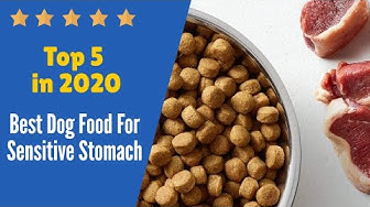 Top 5 Best Dog Food For Sensitive Stomach in 2020.