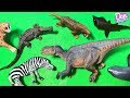 LOTS OF DINOSAURS, WILD ANIMALS, SEA ANIMALS TOYS FOR CHILDREN - Learn Dinosaur & Animal Names