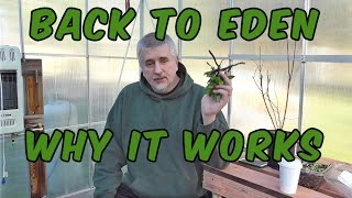 Back To Eden Gardening Method and Why It Works