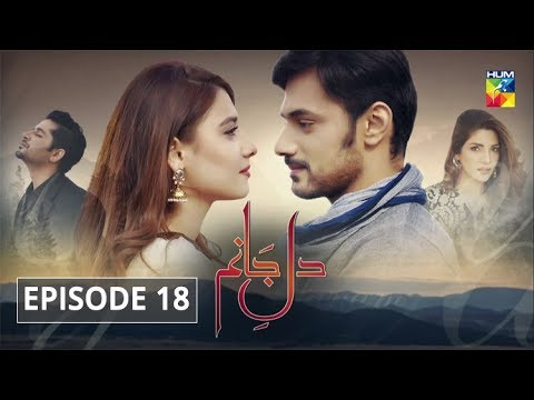 Dil E Jaanam Episode 18 HUM TV Drama