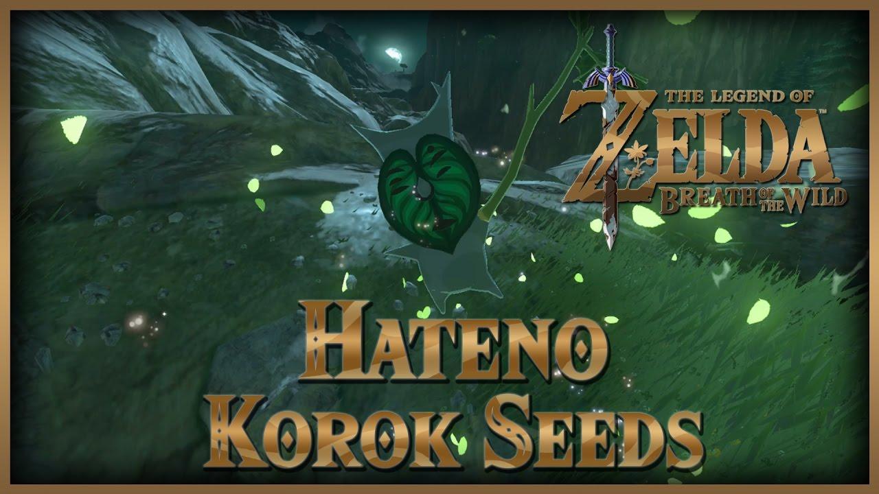 Zelda Breath of the Wild • Korok Seeds • Hateno