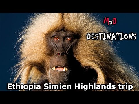 Ethiopia Simien Highlands trip 2014