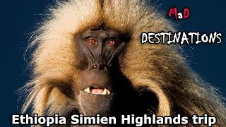 Ethiopia Simien Highlands trip - ጉዞ ወደ ሰሜን ተራራ