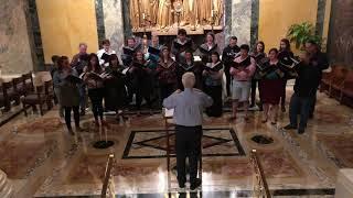 Confitebor tibi, Domine (Palestrina) - Schola Cantorum St. Matthew's Cathedral