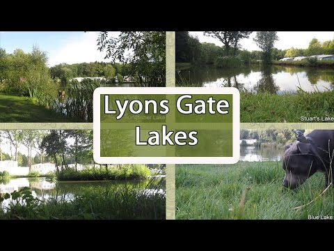 Lyons Gate Lakes