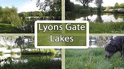 Lyons Gate Lakes