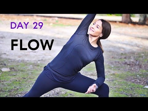Beginners Yoga Flow (20 minute workout) Day 29 | Fightmaster Yoga Videos