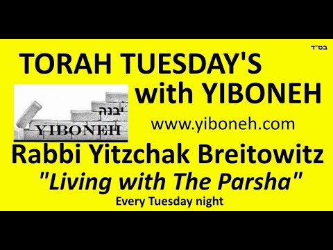 Rabbi Yitzchak Breitowitz: Preparation For Yom Kippur - The 10 Days Of Teshuva