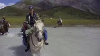 видео Конный поход к подножью Белухи