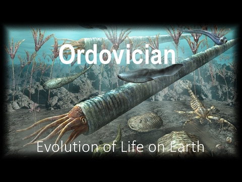 The Evolution of Life part 3 : Ordovician