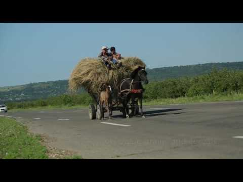 High-Value Crops in Moldova Through Modern Irrigation