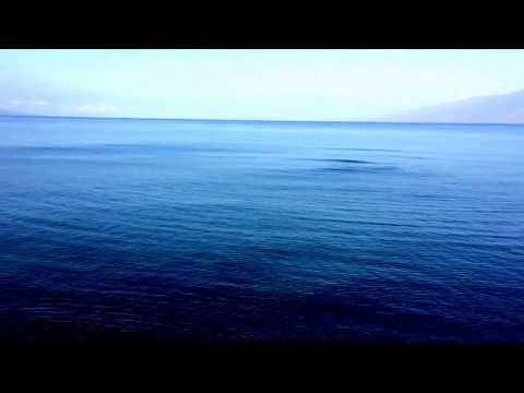 Kahana Beach Resort Ocean View Maui Hawaii