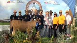 Perfil Agropecuario Domingo 16 Julio - 2da Parte de la 5ta. Feria del Ganado Carora Cdad. Bolivar