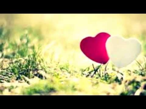 Entschuldigung liebe Liebe unbekannte