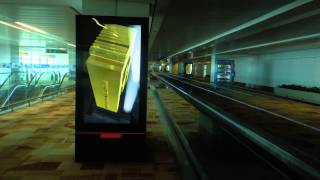 IGI Airport T3 International Arrival 15th November 2013