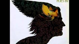 Rare Bird - Flight