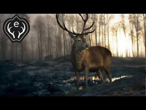 Ben Howard - Depth over Distance (esteble remix)