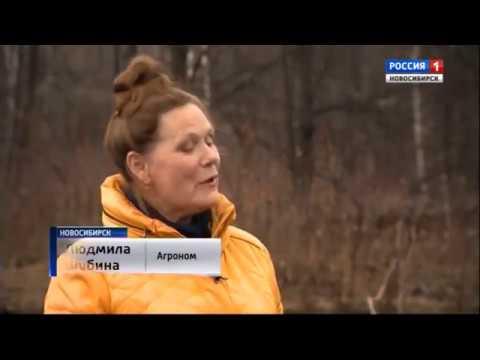 людмила фото николаевна дгск мвд боде россии