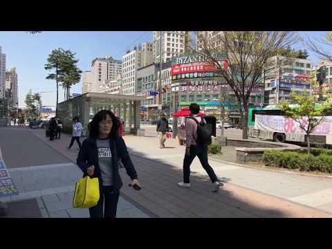 [카메라톡톡!] 당원배가운동! 부천 상동역에서~~(Live)