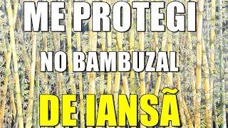 CURIMBA TAMBORES DE UMBANDA - Me protegi no bambuzal de Iansã
