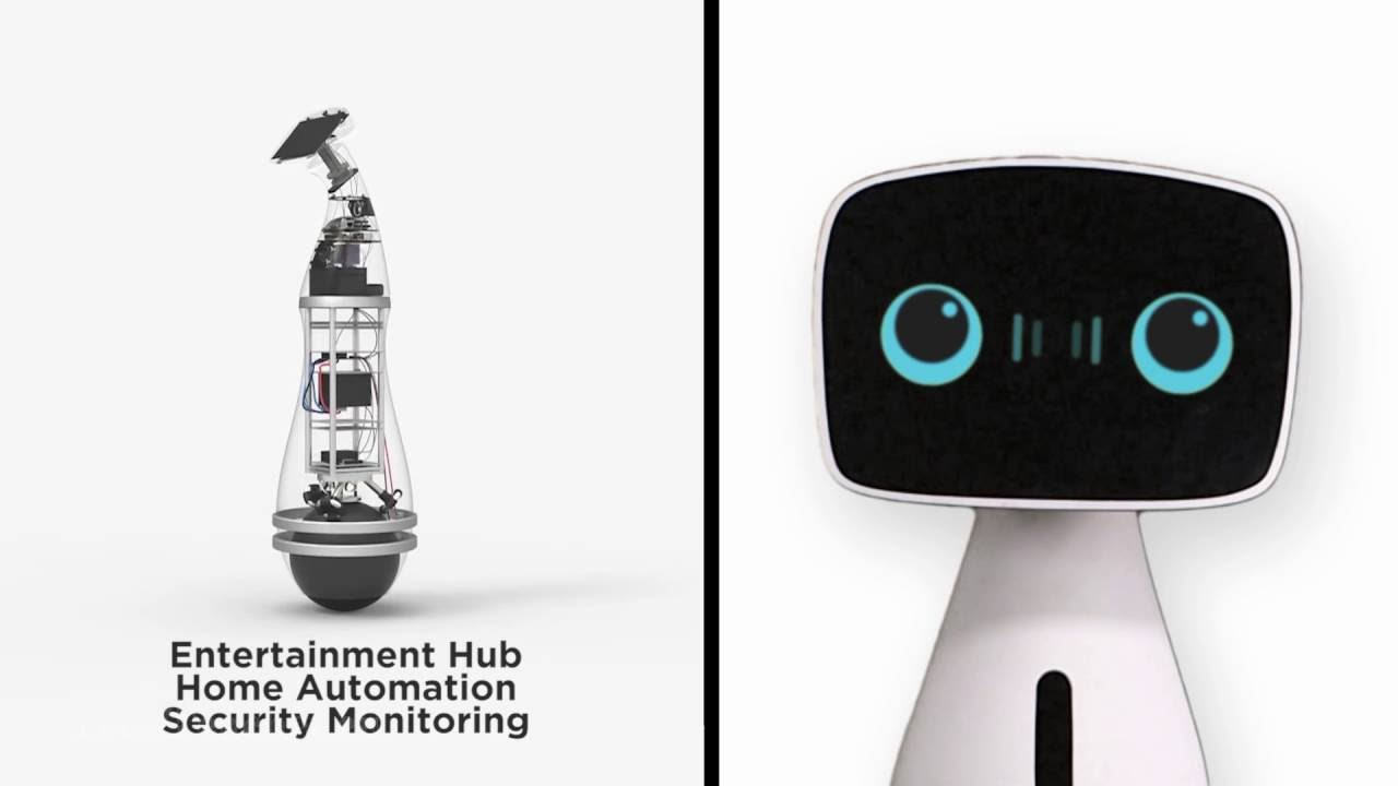 Aido Interactive & Smart Home Robot!