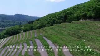 全国棚田(千枚田)サミット 佐渡開催(7/14・15) CM