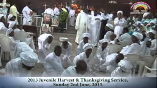 celestial church of christ comforter cathedral akoka parish 1 2013 juvenile harvest